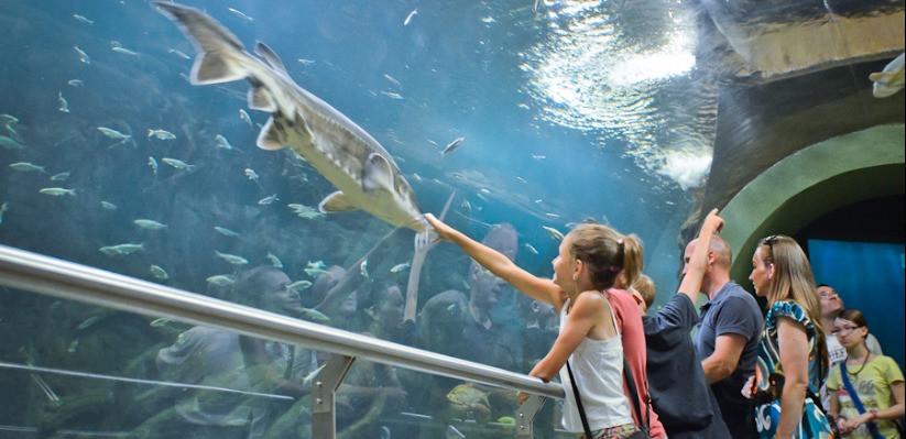 Centrul Ecologic şi poteca tematică de la Lacul Tisza