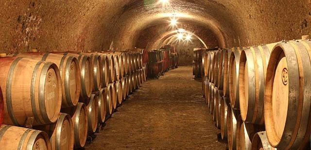 Wine cellars in Eger